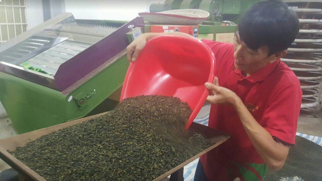 樂菁慈恩製茶廠