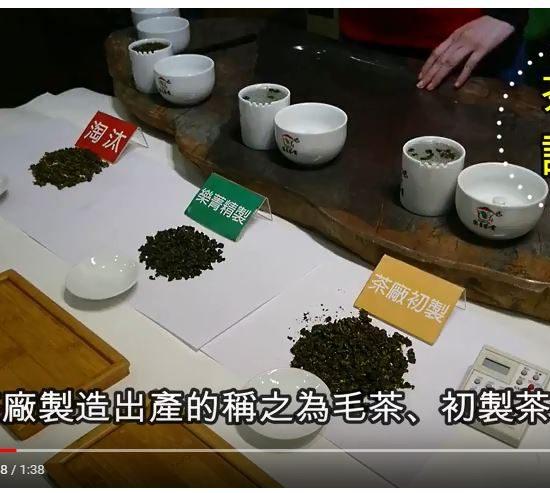 樂菁精製茶